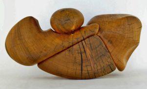 sanderson-aria- fir driftwood-gabriola island